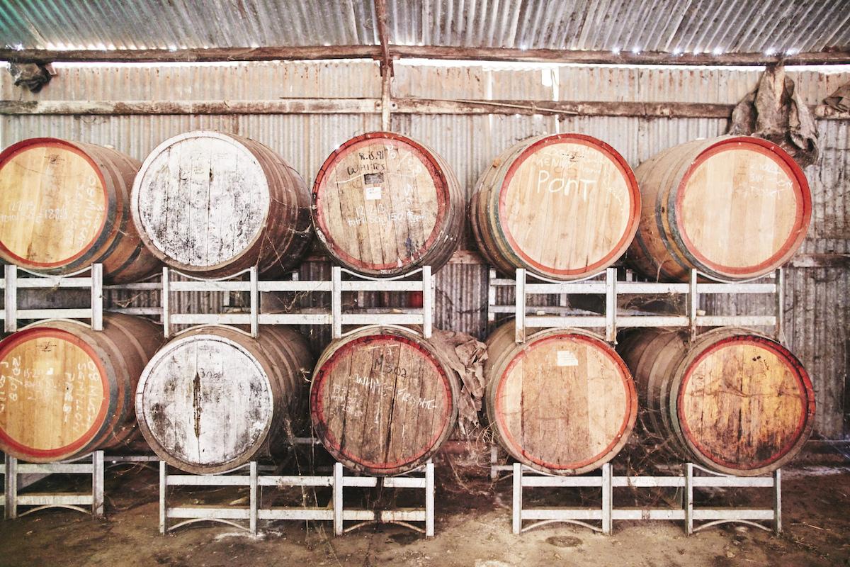 monichino-wines